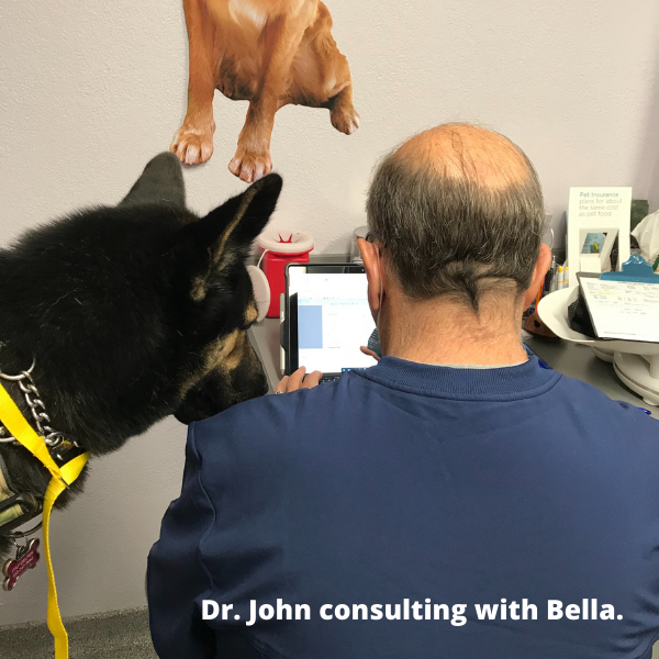 Dr. John consulting with Bella